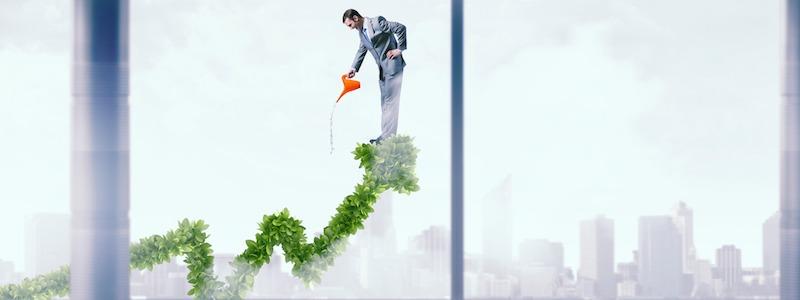 Vivere di cedole: come ottenere oggi una rendita dai propri investimenti